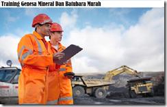 training penambangan genesa mineral dan batu bara murah
