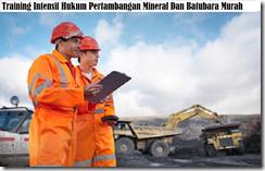 training mining law murah